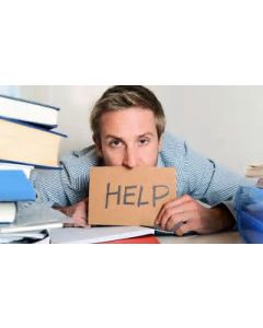 PMP Exam Preparation Online